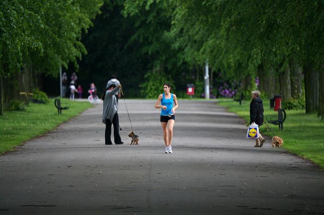 Jogger und Hunde ein ambivalentes Verhältnis