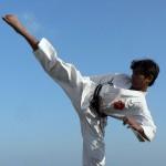 Karate Highkick