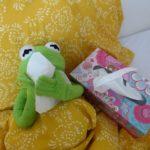 Erkältung kan Kermit kein Sport machen