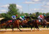Sportwetten auf Pferderennen